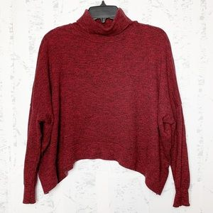 Zara Knit Cropped Turtleneck